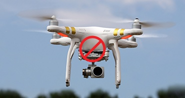 No Surveillance